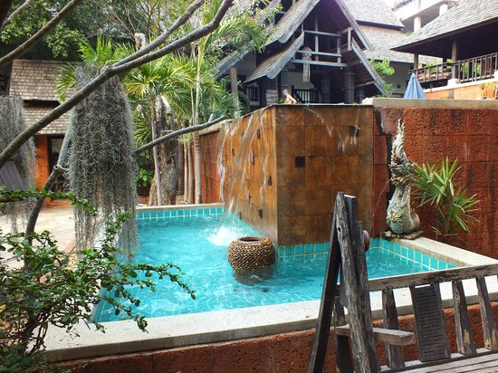 Rainforest Boutique: 1ère piscine