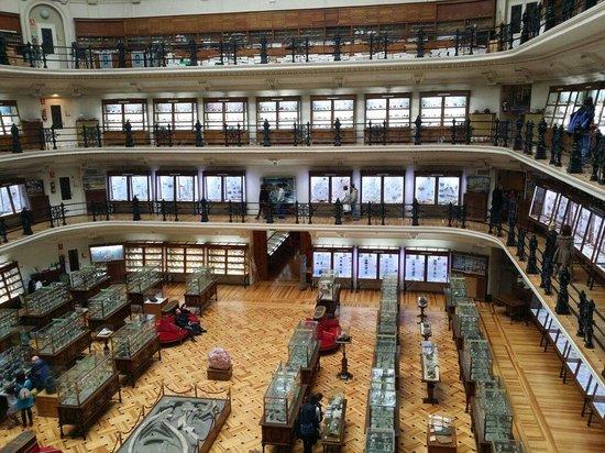 Museo Geominero: Intetesante, agradable y acogedor museo en el centro de Madrid. Junto a la Escuela de ingenieros