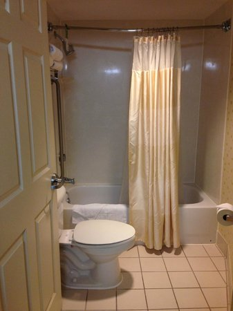 SpringHill Suites Jacksonville : Bathroom