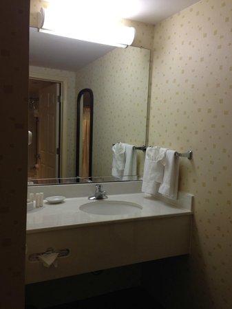 SpringHill Suites Jacksonville: Sink area