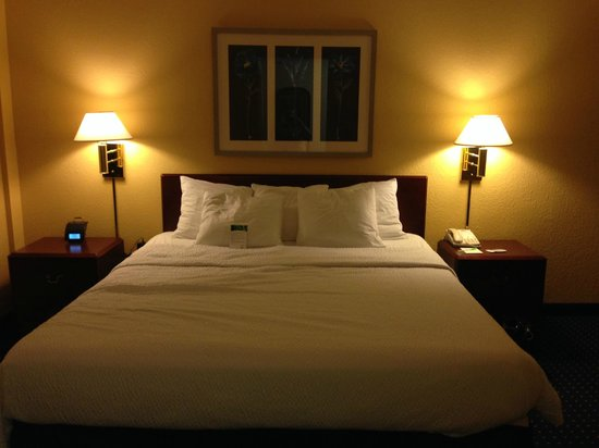 SpringHill Suites Jacksonville : King Bed