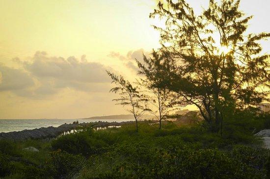 Royalton Cayo Santa Maria : Plage au lever du soleil