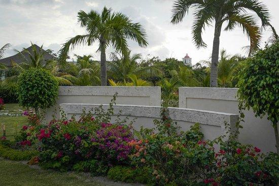 Royalton Cayo Santa Maria : Jardins