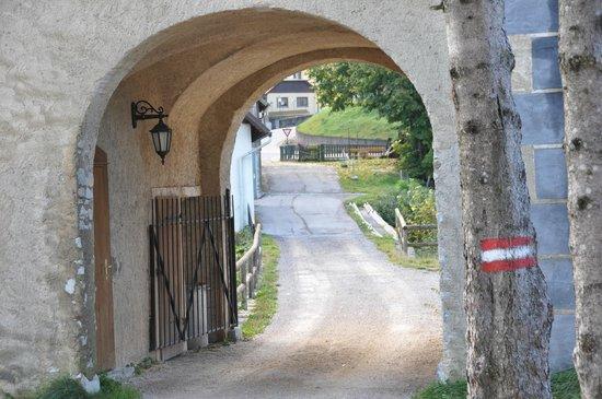 Loosdorf, Avusturya: Территория отеля