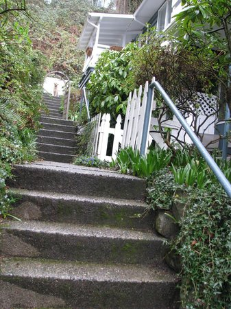 Chambered Nautilus Bed and Breakfast Inn: Walk and steps up to the University Suites