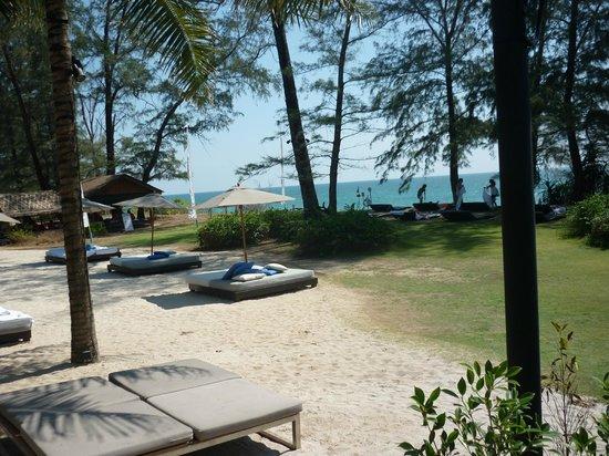 Renaissance Phuket Resort & Spa: GARDEN