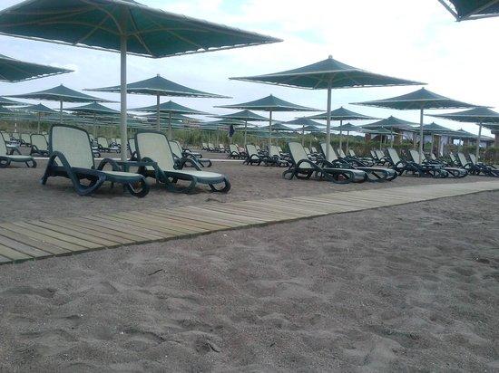 Xanadu Resort Hotel : Лежаки стоят далеко друг от друга