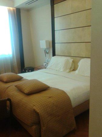 Hotel Principi di Piemonte: Camera