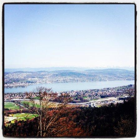 Uetliberg Mountain : View