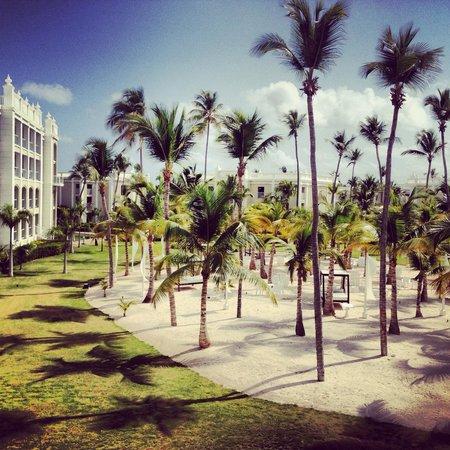 Hotel Riu Palace Bavaro: Gardenview room