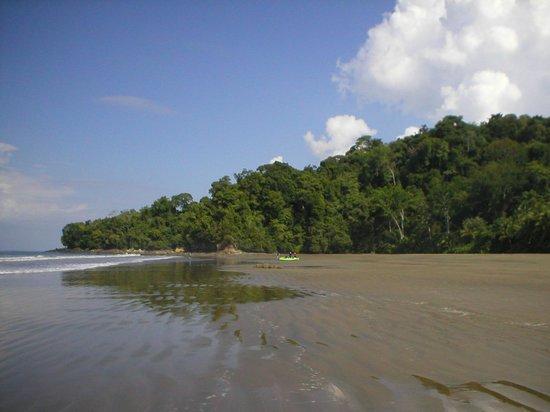 La Cusinga Eco Lodge: The private beach.