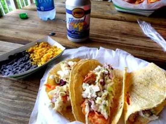 Myakka River State Park: mahi tacos