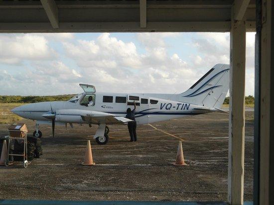 Salt Cay: Flight back to Provo