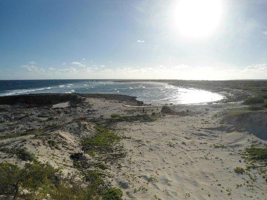 Salt Cay: Touring Around