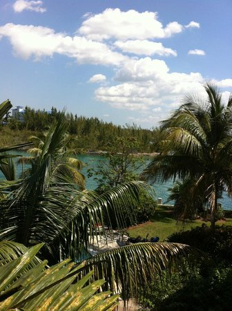 Pelican Bay at Lucaya: View from our balcony