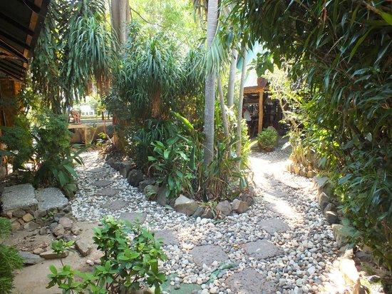 Tropical Garden Bungalows: jardin