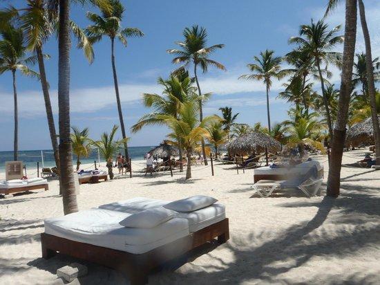 Catalonia Bavaro Beach, Casino & Golf Resort: section previlege a la plage avec des lits