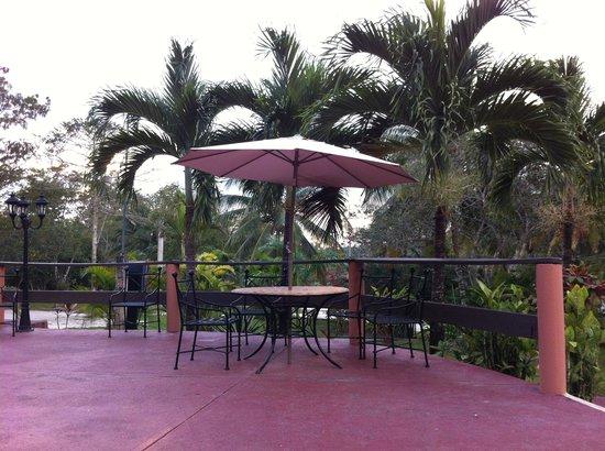 The Log Cab-Inn : By the pool