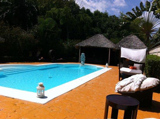 Paradisus Punta Cana: Spa pool