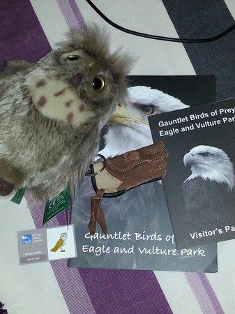 Gauntlet Birds of Prey: Gifts!!!