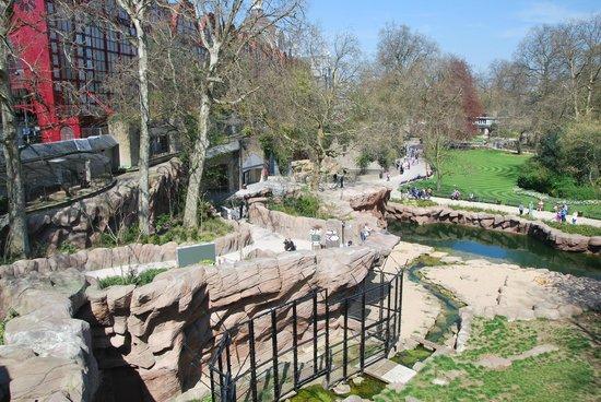 Antwerp Zoo (Dierentuin): van boven af, een deel van het prachtige park