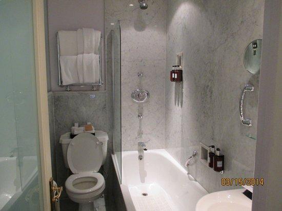 Radisson Blu Edwardian Vanderbilt : this shows the entire bathroom