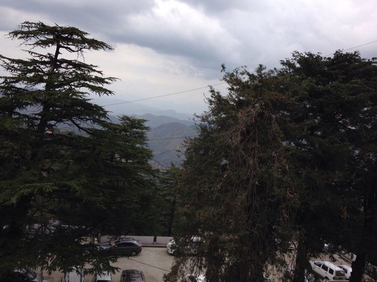 The Oberoi Cecil, Shimla: View from 5th floor luxury room