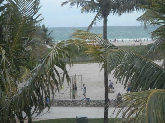 Lummus Park Beach : Lummus Park dal Room Mate Waldorf Hotel
