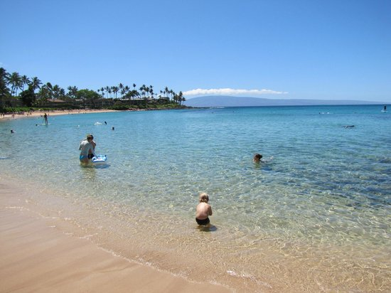 The Gardens at West Maui Hotel: Napili Bay beach, 30 seconds away
