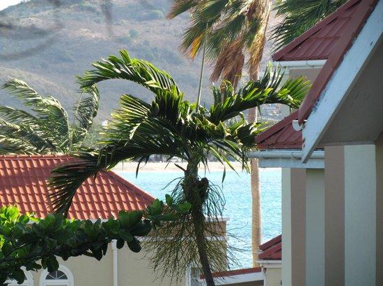 Divi Little Bay Beach Resort: view