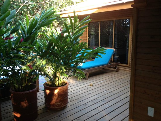 Hamanasi Adventure and Dive Resort : Treehouse 25