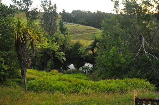 Mount Tutu Eco-Sanctuary: property