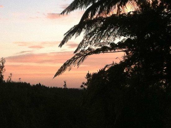 Mount Tutu Eco-Sanctuary: sunset