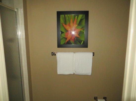 Residence Inn Fort Lauderdale Pompano Beach/Oceanfront: Glass shower