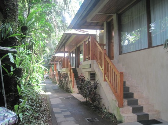Mason Elephant Lodge : bungalow