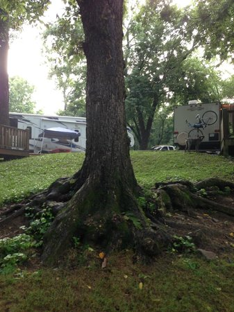 Townsend / Great Smokies KOA : RV PARK
