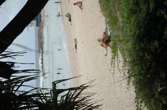 Coolangatta Beach: coolongatta beach