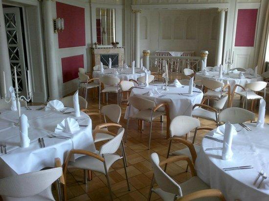 Hotel Schloss Schweinsburg: Salon