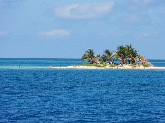 Ruthless Roatan Charters: Small Island amoun Cayos islands