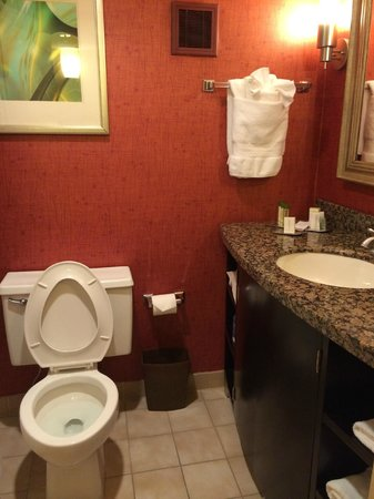 DoubleTree by Hilton Hotel Columbus : Bathroom
