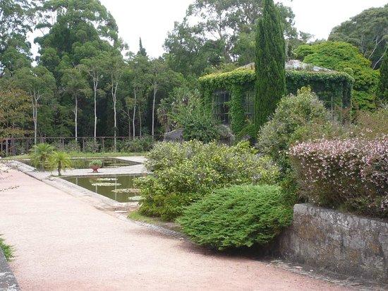 Santa Teresa National Park: verde