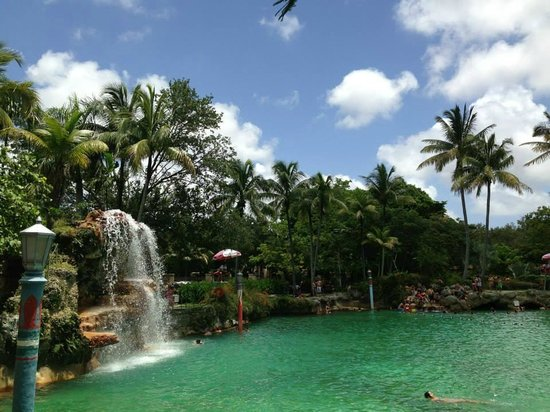 Miami Tour Company: Venetian pool