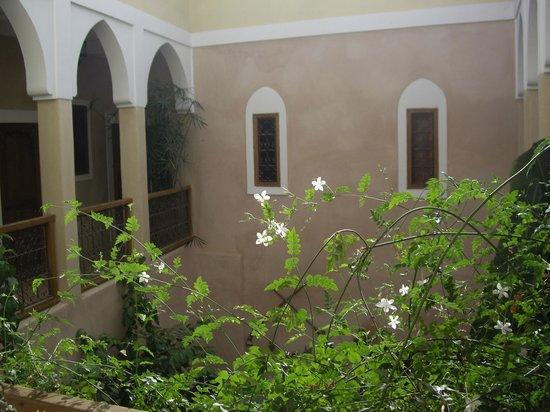 Riad Sidi Mimoune : vue depuis l'étage de notre chambre