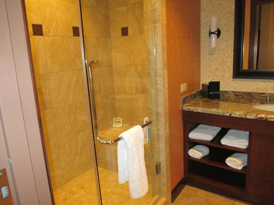 Downstream Casino Resort: bath