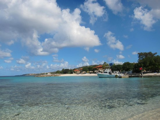 Curacao Marriott Beach Resort & Emerald Casino: Great snorkeling to the right of the hotel
