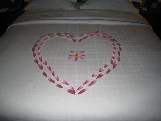 Shinta Mani Club: Honeymoon Surprise