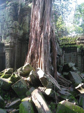 Shinta Mani Club : Angkor Thom