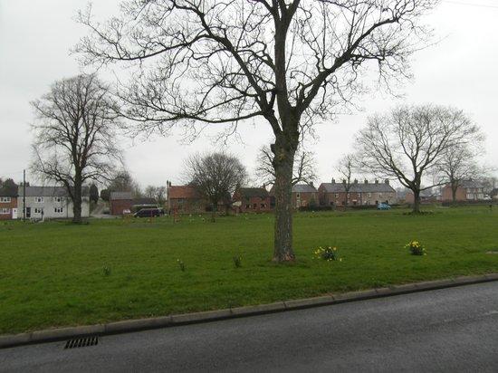The Village Inn: Bromton Village Green