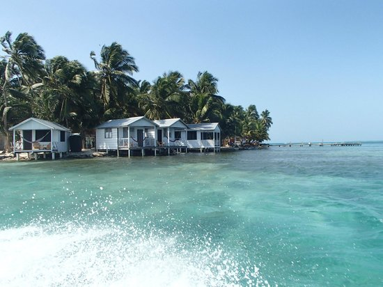 Tobacco Caye Paradise: View of the cabins from the water.
