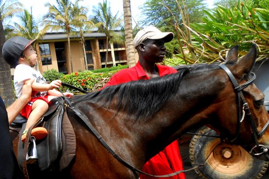 Speke Resort and Conference Centre : Horse ride